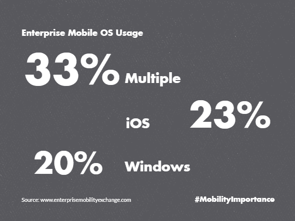 Enterprise Mobile Usage iOS Windows
